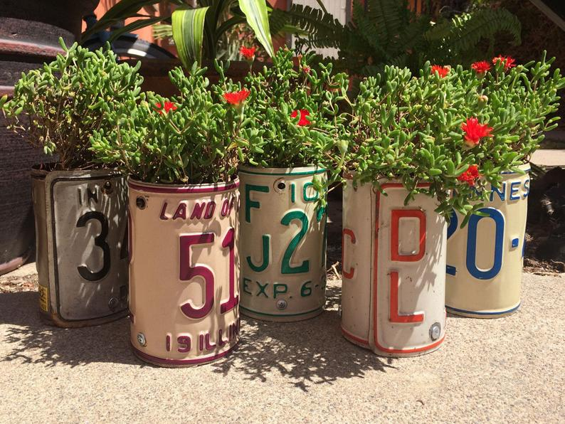 license plate bent into a cylinder shape with flowers planted inside