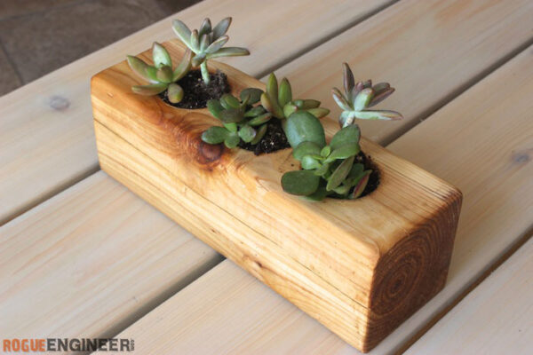 4x4 wood block with spaces drilled. dirt and succulents planted in three hallowed out spaces
