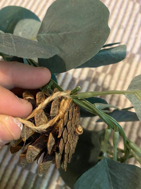 pine cone and eucalyptus